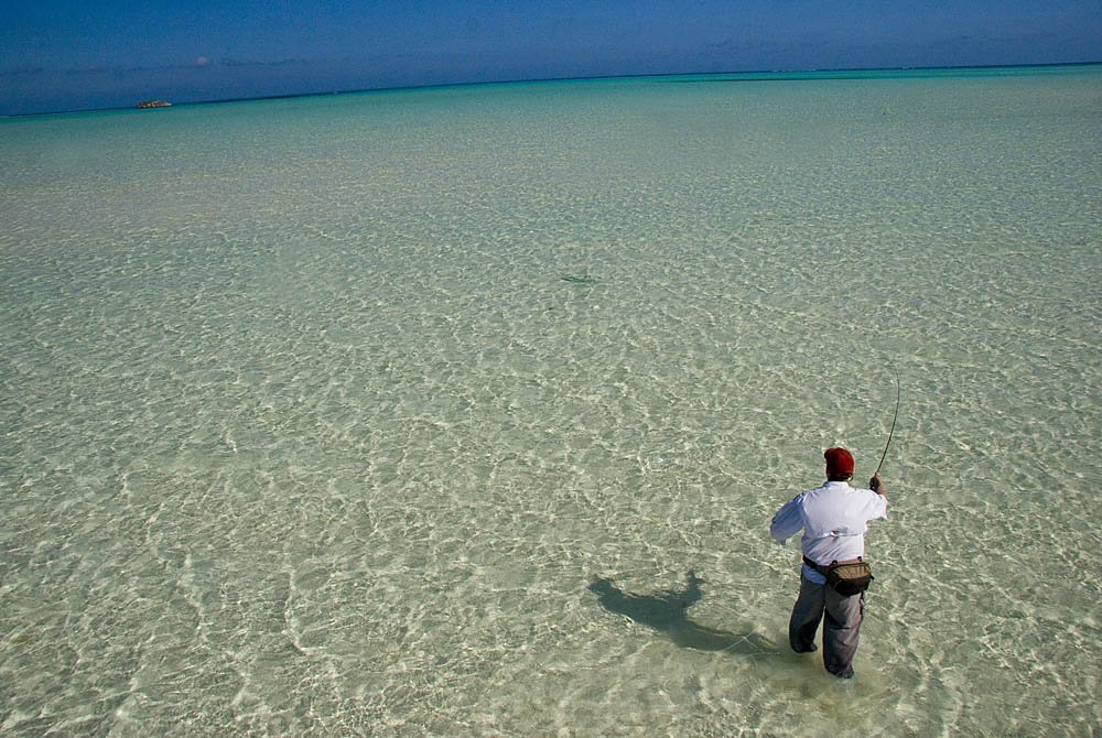 Best Bahamas Island For Bonefishing